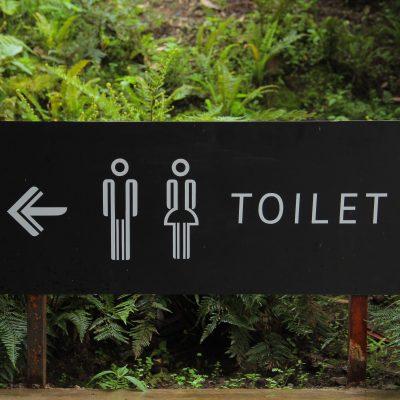 5 Tips for Toilet Training